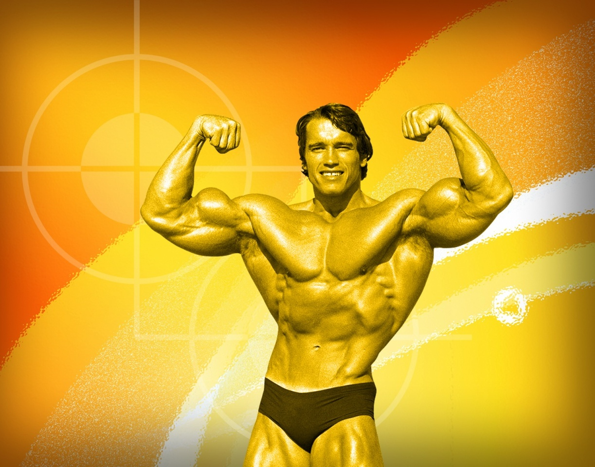 Arnold schwarzenegger wallpapers tello1